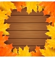 Autumn background with realistic maple vector image