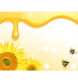 Sunflower and Bee Design on a Honey Backdrop vector image