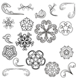 beautiful floral ornament elements vector image