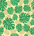 exotic seamless pattern with monstera leaves vector image
