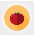 Tomato icon Flat vector image