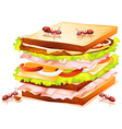 Sandwich and ants vector image vector image