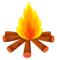 campfire on white vector image