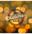 Autumn Sale poster bokeh background vector image