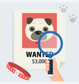 flat hand with magnification find cute dog vector image