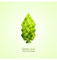 Colorful green leaf vector image