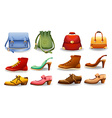 Shoes and bags vector image