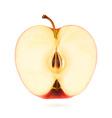 Half apple vector image