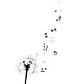 dandelion notes vector image