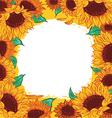 frame pattern flower sunflower vector image