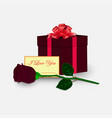 gift with love vector image