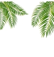 Beautifil Palm Tree Leaf Silhouette Background vector image vector image