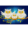 cartoon funny family of grey owls vector image