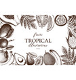 frame with tropical fruits vector image