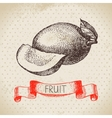 Hand drawn sketch fruit mango Eco food background vector image