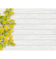 autumn tree branch on white wooden background vector image