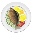 fish and vegetables on a plate vector image vector image