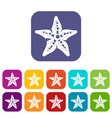 starfish icons set flat vector image