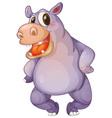 hip hippo vector image