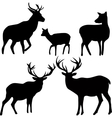deer and roe silhouettes on the white background vector image