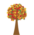 Tree in autumn vector image vector image