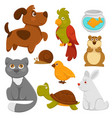 cartoon pets domestic animals flat icons vector image