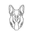 isolated german shepherd avatar vector image
