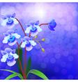 Bush Orchid violet on a luminous vector image