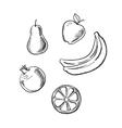 Apple pear lemon banana and pomegranate vector image