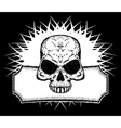 drawn skull vector image vector image