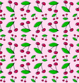 Sour cherries vector image vector image