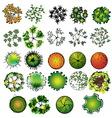 A set of colored treetop symbols vector image