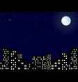 night sity vector image