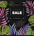summer sale background with exotic colorful leaves vector image