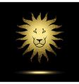 Stylized Lion vector image