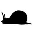 silhouette of snail vector image vector image