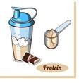 Scoop Protein Shaker Chocolate vector image