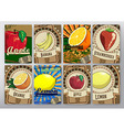 background with fruits vector image
