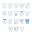 Big Dental Teeth Collection vector image