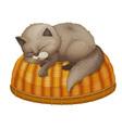 Cat sleeping vector image