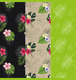 set of 3 seamless patterns with tropical designs vector image