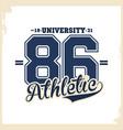 university college typography t-shirt graphics vector image