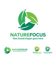 nature photography logo leaf with play button vector image