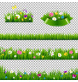 green grass borders collection with flowers vector image