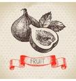 Hand drawn sketch fruit fig Eco food background vector image