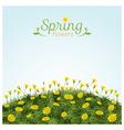 Flowers Spring Field Season Background vector image