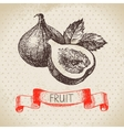 Hand drawn sketch fruit fig Eco food background vector image