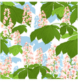 Seamless background with chestnut flowers vector image vector image