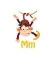 Monkey Funny Alphabet Animal vector image