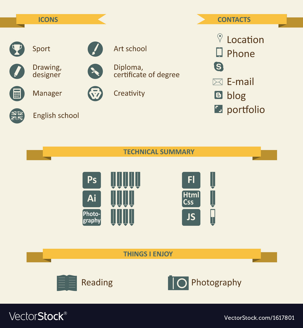 Infographic and icons for resume vector
